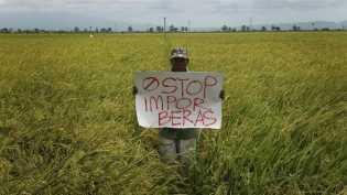 PBB Sebut Swasembada Beras Bukan Solusi Ketahanan Pangan RI
