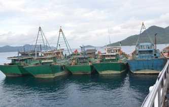 KP Hiu Macan Natuna Tangkap 13 Kapal Ikan Berbendera Vietnam