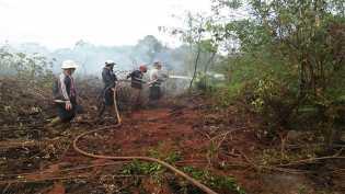 DPRD Riau Panggil Manajemen PT SSS Terkait Kebakaran Lahan Perusahaan