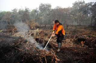 Satgas: Lahan Terbakar Jangan Pernah Dikelola Kalau Tidak Ingin Jadi Tersangka