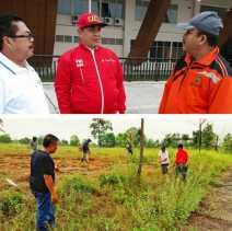Besok, PWI Riau Tanam 500 Bibit Pohon di Stadion Utama