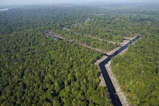 KLHS Terpenuhi, Pemprov Riau Harap RTRW Tuntas Awal April