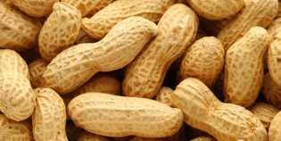 Selain Mencegah Asma dan Menyehatkan Jantung, Ini Manfaat Lain dari Kacang Tanah