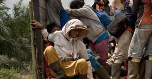Upah Tidak Dibayar, 16 Buruh Keroyok Satpam Perusahaan Sawit Inhil
