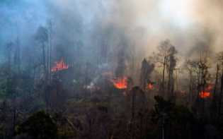 Titik Panas Muncul, Suhu di Riau Mencapai 34,5 Derajat