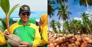 HM Wardan, Bapak Kelapa Dunia dari Negeri Seribu Parit Inhil