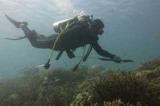 Kronologi Hilangnya Wisatawan Swedia di Perairan Pulau Komodo