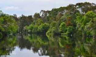 Yuk Intip Salah Satu Destinasi Wisata Danau Janda Gatal di Rohil