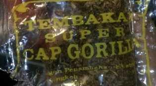 Tembakau Gorila Sasar Anak dan Remaja Karena Ini