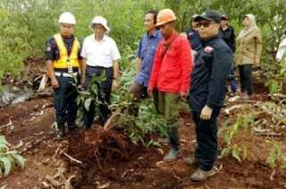 Garap Lahan Gambut, Kementerian LHK Beri Sanksi PT Sekato Pratama Makmur
