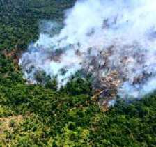 233 Hektar Lahan Terbakar Dipolice Line, Polda Riau Tangani 13 Kasus Karhutla Sepanjang Januari - Fe