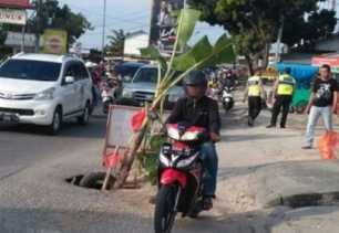 Tak Kunjung Diperbaiki, Warga Pekanbaru Tanam Pisang di Tepi Jalan