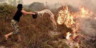 49 Korporasi Dilaporkan ke Mapolda, Ada Bukti Kebakaran Terus Berulang