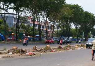 Demi Pembangunan Fly Over Belasan Pohon Ditebang, Ini Kata PUPR Pekanbaru