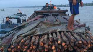 Ditpolair Polda Riau Gagalkan Penyelundupan Kayu ke Malaysia