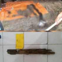Teka-teki Tengkorak Wanita di Kebun Sawit Bukit Kapur Dumai Terkuak, Ada Kisah Tragis di Balik Peris