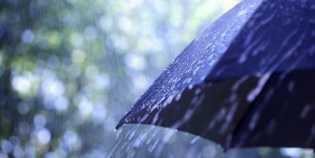 Prakiraan Cuaca, Bagian Utara dan Barat Riau Akan Hujan