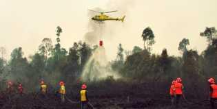 7 Titik Panas di Riau Terdeteksi Satelit