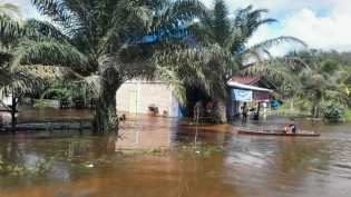 Sungai Nilo Ukui Meluap, Warga Mulai Mengungsi
