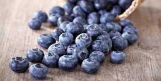 Peneliti Ungkap Blueberry Dapat Bantu Pengobatan Kanker Serviks