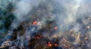 Dugaan main mata Polda Riau dan 15 Perusahaan kasus karhutla