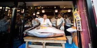 Pengusaha Sushi Ini Beli Tuna Seharga Rp 8,5 M