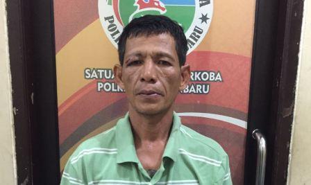 Seorang Pengedar Ganja dan Sabu di Sidomulyo, Pekanbaru Digerebek Polisi