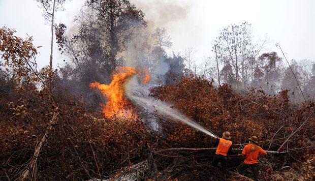 Kapolda Riau Yakin Kebakaran Lahan Terencana